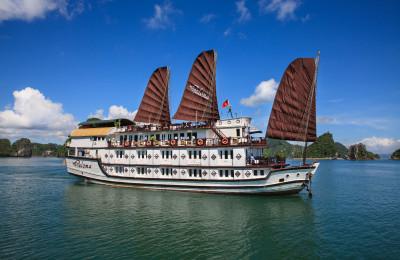 paloma cruises