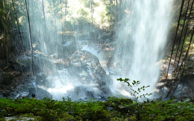 Cha Oug Waterfalls - Cambodia tour