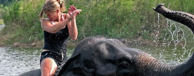 Samui Jungle Safari - Thailand tour