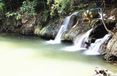 krabi rain forest tour - thailand tour